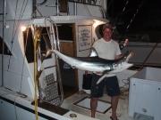 Sharking